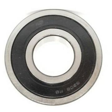 (6319 6319 ZZ 6319 2RS) -O&Kai High Quality Deep Groove Ball Bearings NACHI NSK NTN OEM