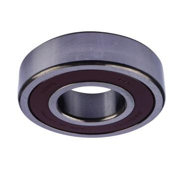 Rubber Sealed Single Row Deep Groove Ball Bearing NSK 6201 6202 6203 6204 6205 6206 6207 6208 6210 6303 6305 6306 6307 6308 6309 6310 6314 6902